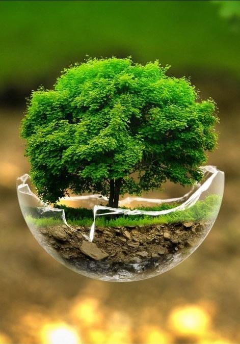 save-environment